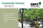 DRG Community Forestry Services Sheet