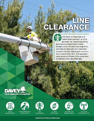 Line Clearance Sell Sheet (25 pk)