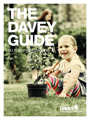 The Davey Guide