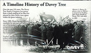 Davey History Brochure (50 Pack)